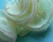 Triple Blossom Silk Wild Rose in Pale Yellow and Pink for Bridal, Sashes, Corsages, Fascinators, Pins, Altered Couture or Costume Design