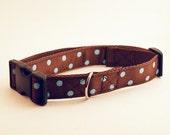 Brown with Blue Polka Dot Dog Collar