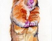 Hamster Original Watercolor by Katy O'Connor