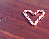 Candy Cane Photograph - red white stripes sugar peppermint tree decor brown heart love winter home decor 5x7, 8x10, 4x6