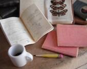 Miniature School Notebooks