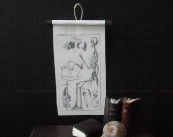 Miniature Natural History Chart --- Bones