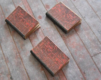 Miniature Transylvania Diaries