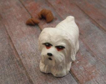 Miniature Naughty Puppy
