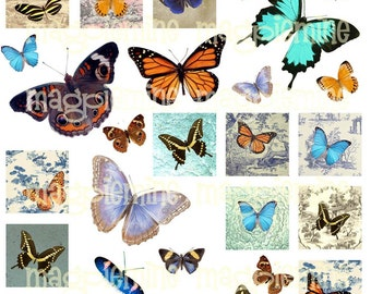 Digital Butterflies on Toile Background Collage Sheet - One Inch Squares and Individual Moths and Butterflies - Instant Download - Printable