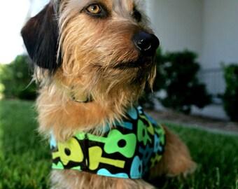 SALE-Rock Star Dog Vest
