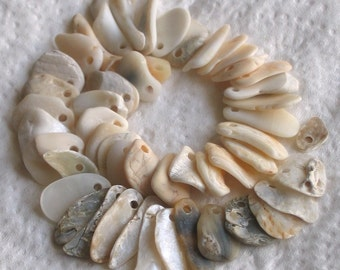 50 Natural Sea Shell Fragments Small Charms Top Drilled 1.5mm holes Supplies (1373)