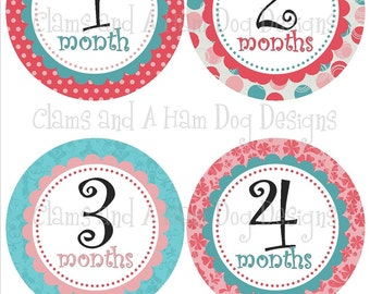 Monthly Milestone Stickers- Girls monthly stickers- Baby month stickers- Monthly stickers with optional Gerber ONESIE- Baby shower- GRL227