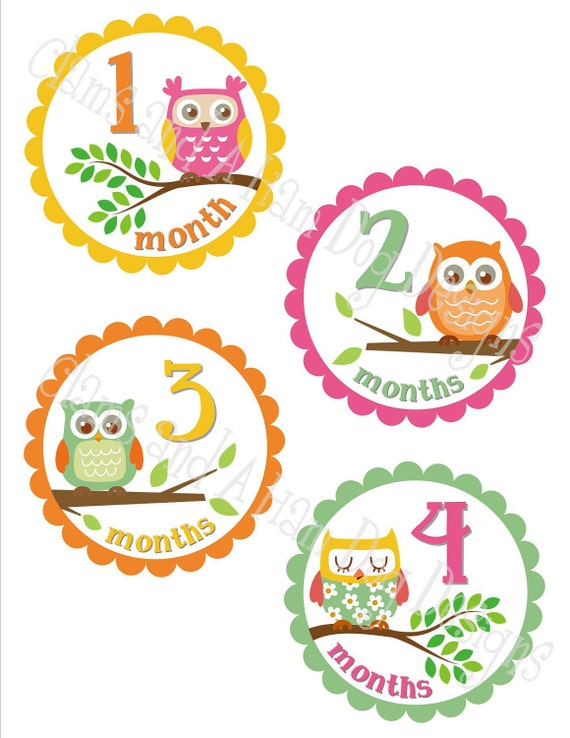 Monthly Baby Owl Stickers- Girls monthly stickers- Baby month stickers- Monthly Milestone stickers- Owl Baby shower decoration- GRL123