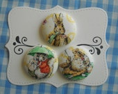 Peter Rabbit- fabric covered button collection 2 -size 60