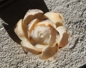 Genuine Ivory & White SHELLFLOWER PIN inspired by Sailors Valentines