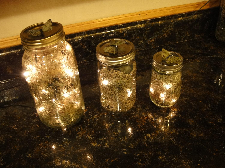 1 2 Gallon Mason Jar Firefly Lantern Corded