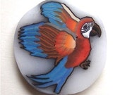 LAST TWO CANES Polymer Translucent Scarlet Macaw Clay Cane Realistic