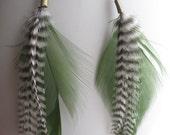 Simple yet Elegant Feather Earrings -green w/ B&W Stripes