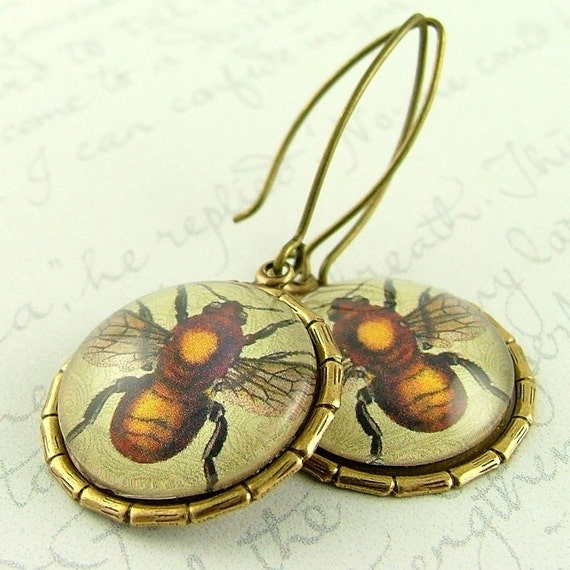 Bumble Honey Bee Entomology Earrings - Insect Jewelry