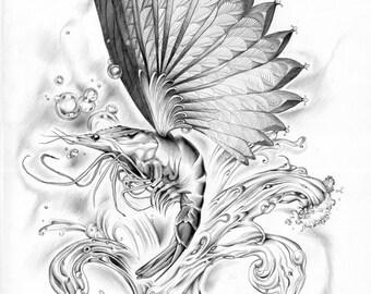 Digital print of original illustration 'Flying shrimp'