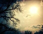 spooky landscape photography / sun, lomo, halloween, silhouette / yellow gold, midnight blue / hard to impress / 8x10