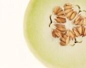 honeydew food photography / green, melon, fruit, breakfast, kitchen decor, seeds, grow, garden, minimalist / honeydew / 8x10 fine art photo