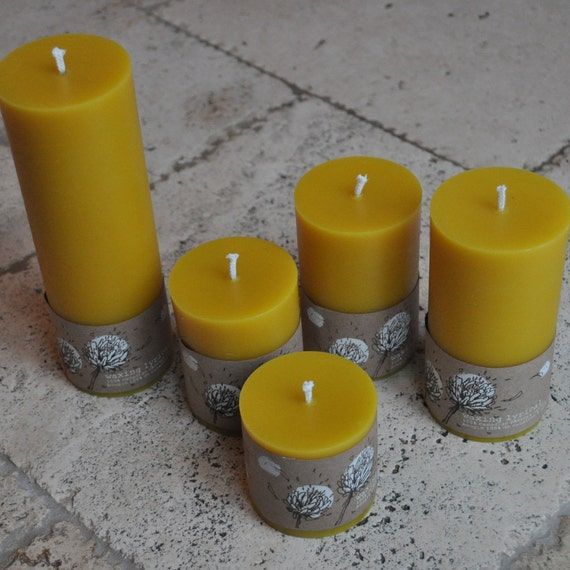 Beeswax Candles (Organically Managed) Canadian -- Set of Five Long Burning Pillars