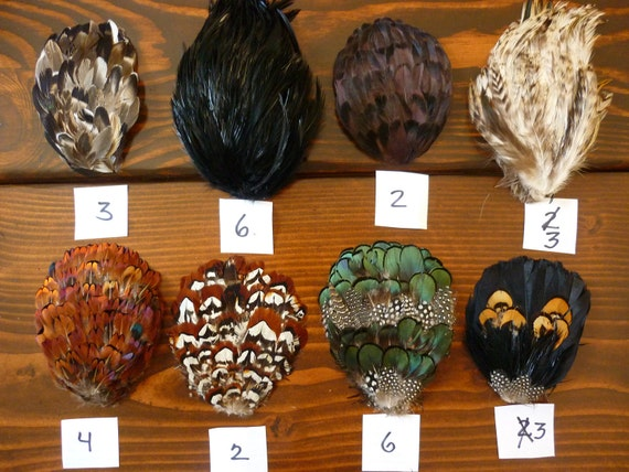 Huge lot of 90 feather pads, 24 styles (pheasant, mallard, guinea, Lady Amherst, Nagorie)