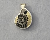 Pendant,  Pyritized Ammonite in Gold and Silver