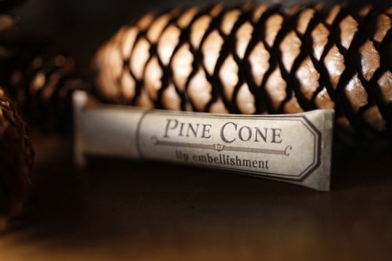 Pine Cone lip balm - natural lip balm with beeswax, cocoa butter, forest-inspired natural flavor in eco-friendly tube