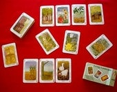 Living Landscapes Permaculture Card Game - Eco Friendly Game - Green Gift under 10 dollar Waldorf Education