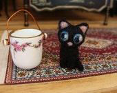 Ebony a beautiful black kitten