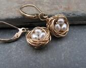 Nest earrings in 14k goldfill