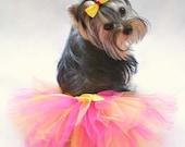 Bright Princess Hot Pink And Yellow Dog Tutu and Free Matching Hair Bow