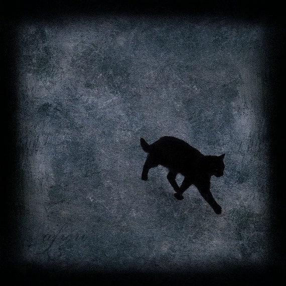 Black cat photograph, cat print, Walking Away, Fine art photography, cat photo, photo painting