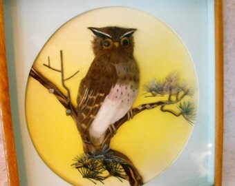 Vintage behind glass  3D realistic Owl  wooden framed picture with pastel background-yellow and aqua-