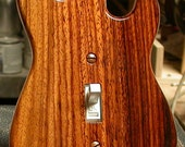 Special Edition Rosewood Guitar Shaped Switchplates