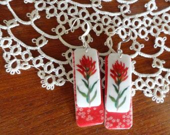 Red Indian Paintbrush Earrings