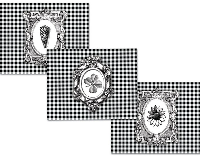 Vintage Botanical Set of 6 Note Cards by Ellen Medlock Studio - Gray Seashell, Four Leaf Clover, Daisy Black and White Check, (#506)