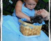 Halloween Costume Girls Boutique Dorothy The Wizard of Oz Tutu Custom for kelsey