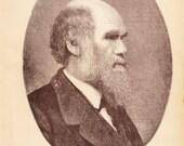 Charles Darwin Portrait - 1887 Vintage Illustration