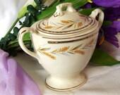 1948 Eggshell Georgian Sugar Bowl Homer Laughlin Kingston Pattern Vintage China with Lid 1940s Ivory Gold Trim Wheat Design
