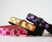 Polka Dots Adjustable Dog Collar - Medium or Large