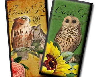 Wise Owls No1 - Digital collage sheet - 1 x 2 inches/Domino images