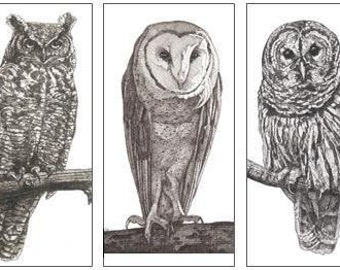 Trio of Owls Reproduced Pen-and-Ink Drawings on Note Cards