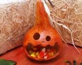 Halloween Candy Dish Gourd