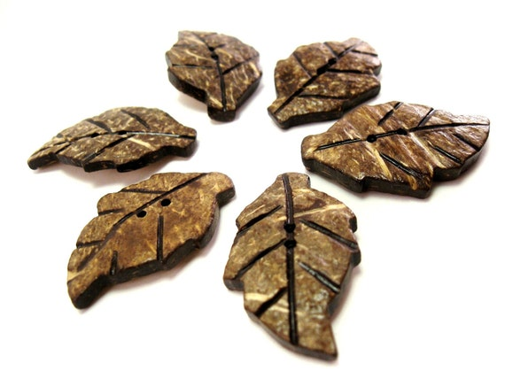 Leaf Coconut chocolate brown eco friendly Button set of 6  (600A)