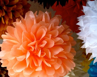 Custom Colors ... 30 tissue paper poms // wedding ceremony // birthday // baby shower // fiesta // party decorations