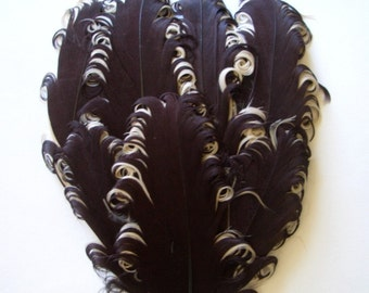 Feather Pad - 1 Chocolate Truffle Curled Goose Feather Pad