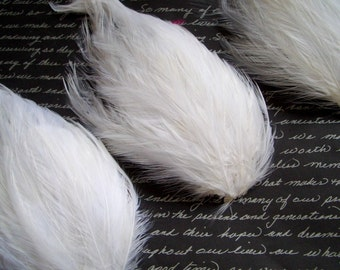 SET OF 5 White Hackle Feather Pads