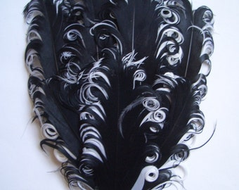 Feather Pad - 1 Black and White Curled Goose Feather Pad