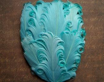 1 Aquamarine Curled Goose Feather Pad