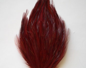 Wine Hackle Feather Pad