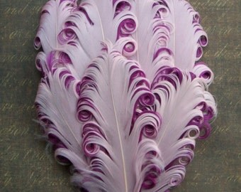 Feather Pad - 1 PINKBERRY - Pink on Berry Curled Goose Nagorie Feather Pad